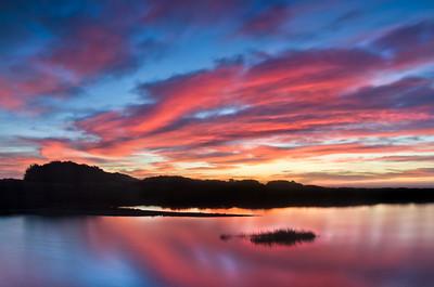 Estuary, Gualala River, Mendocino County, California