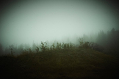 235 Foggy