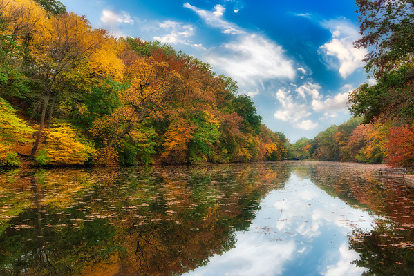 Fall Color in the Northeast -  USA
