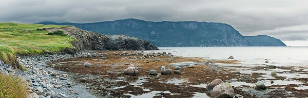 Rocky Harbour at low tide.
