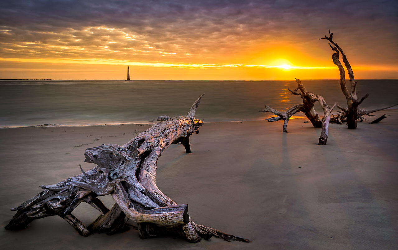 Lighthouse and Driftwood