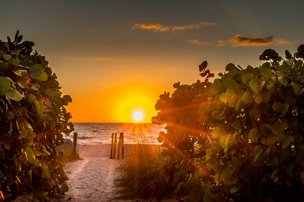 Florida - Path to the Sun