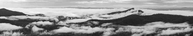 Pisgah National Forest - NC - Panorama