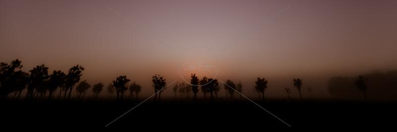Misty Wairarapa