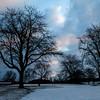 Winter Morning at Kensington MetroPark