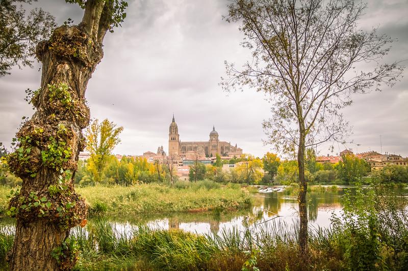 Catherdral of Salamanca