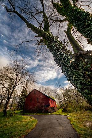 Ivy Barn