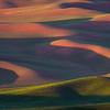Shadowed Hills, Palouse, WA