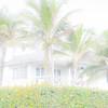 Delray Beach - High Key 5