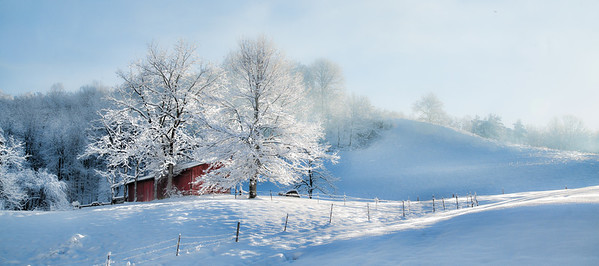 """Mar 12 - Winter's Glow<br /> <br /> Another image from a recent snow fall.   The morning sun peeking out over the hill on the right of the image illuminated the snow covered trees by the small barn.  <br /> <br /> Thanks so much for your comments on my """"That's Snow Bull"""" image I posted yesterday.  It had snowed so much and was cold, so the snow that fell on the bull had not melted at the time I took the image.  He did not look uncomfortable in the cold."""
