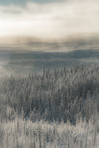 Taken in Whitehorse, Yukon