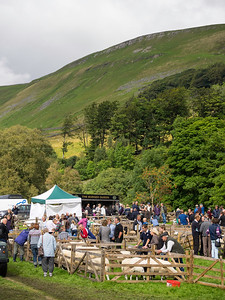 Moorcock Show site, Wensleydale    copyright photographyinyorkshire.co.uk