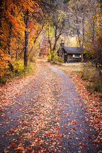 Logan Photographers, Logan Canyon Cabin Fall