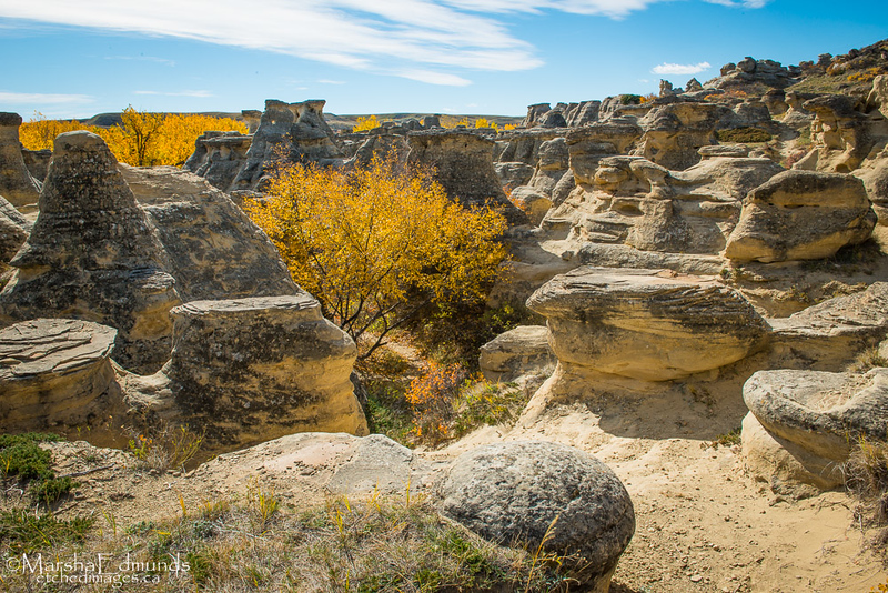 Autumn in the Hoodoos