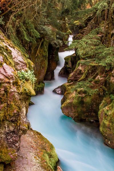 Avalanche Creek Gorge, Glacier National Park