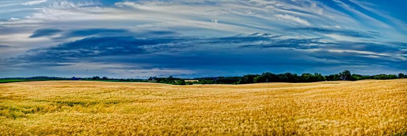 Field & Prairie Pano