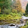 Oct 14 - Gandy Creek #2