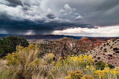 Utah Rainstorm