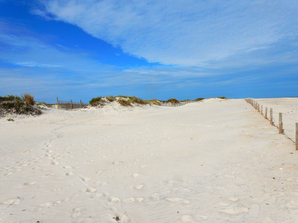 Sand dunes along the Atlantic Ocean