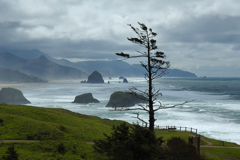 Ecola State Park 3