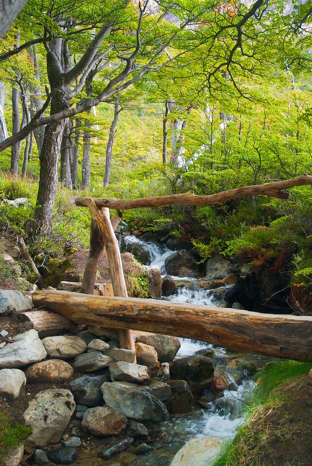 Trail to Laguna de los Tres – Los Glaciares National Park, Patagonia, Argentina