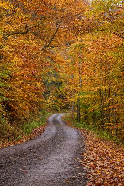 Sullivan Falls Road