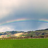 Rainbow over the Garlic Fields of Gilroy