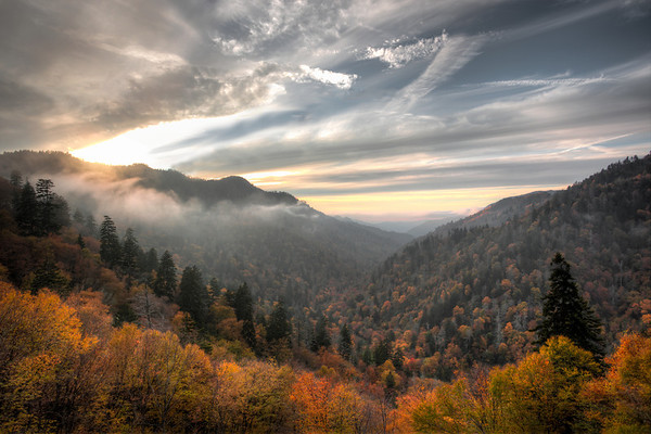 Changing fall leaves bask in the final rays of the day's sun in the Smoky Mountains.