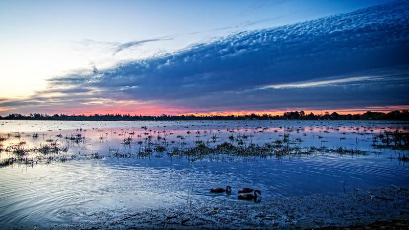 Lake Wendouree Evening