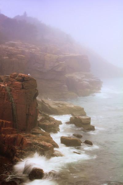 Acadia Seacoast in Morning Mist, Acadia National Park, Maine