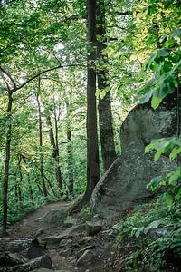 Mt  Yonah-8985