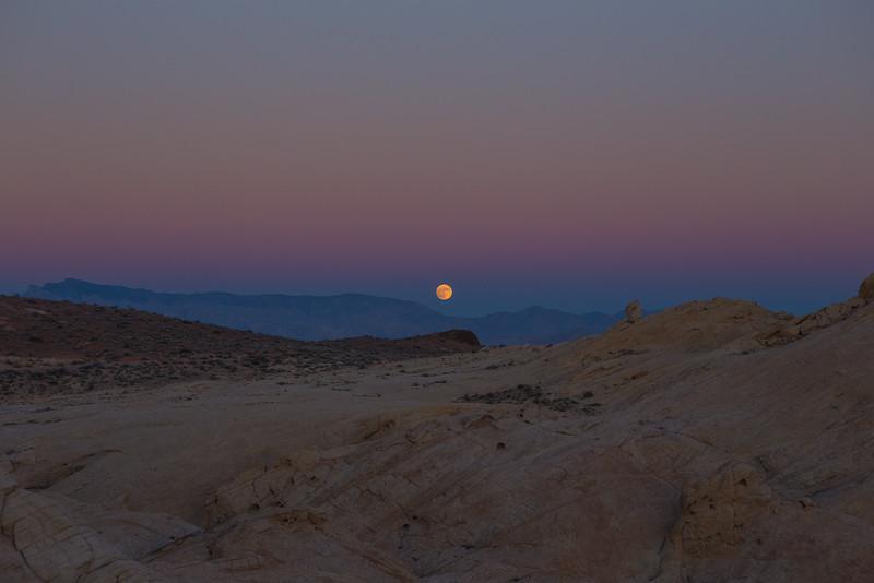 Super Moon Rises