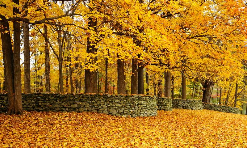 Goldsworthy Wall