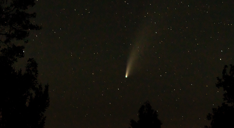 Comet Neowise 1