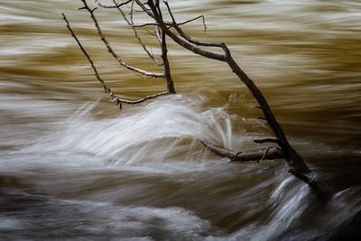 Beaver River #1