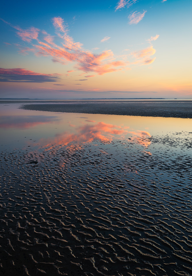 Mudflat Reflection