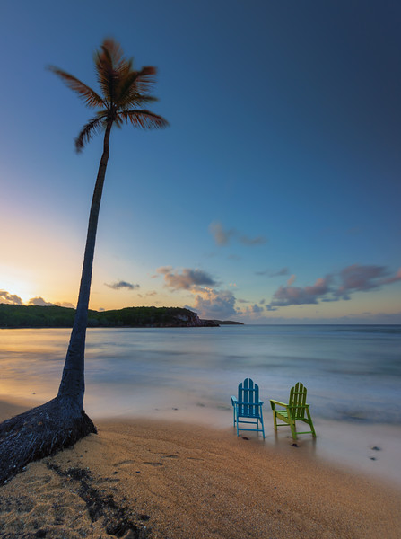 Palm and Chairs at Bolongo Bay, St Thomas USVI