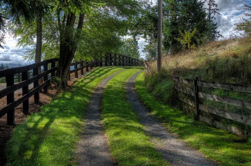 Road near Maple Valley, Washington