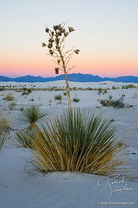 White Sands Sunrise