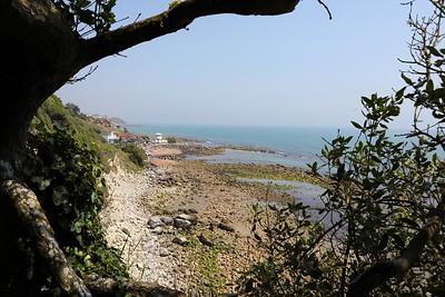 Steephill Cove (1)