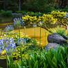 Japanese Garden Pond, Shore Acres, Oregon