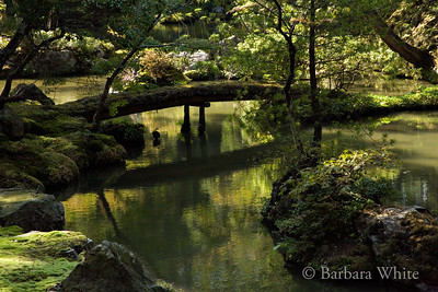 Bridge At Moss Temple Garden