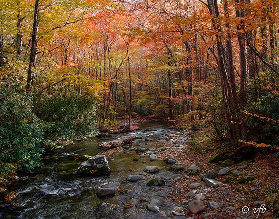 Smokey Mountain Fall