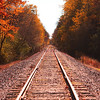 Autumn Tracks