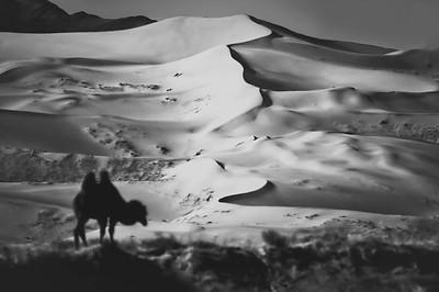 The Dunes of The Gobi