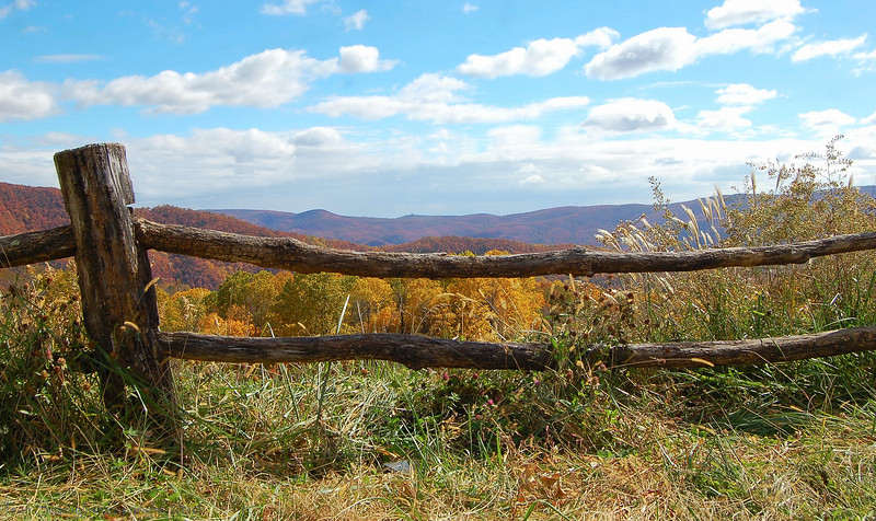 Blue Ridge Mtns, View at AltaPass Historic Orchard