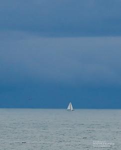Sailing into the Deep Blue