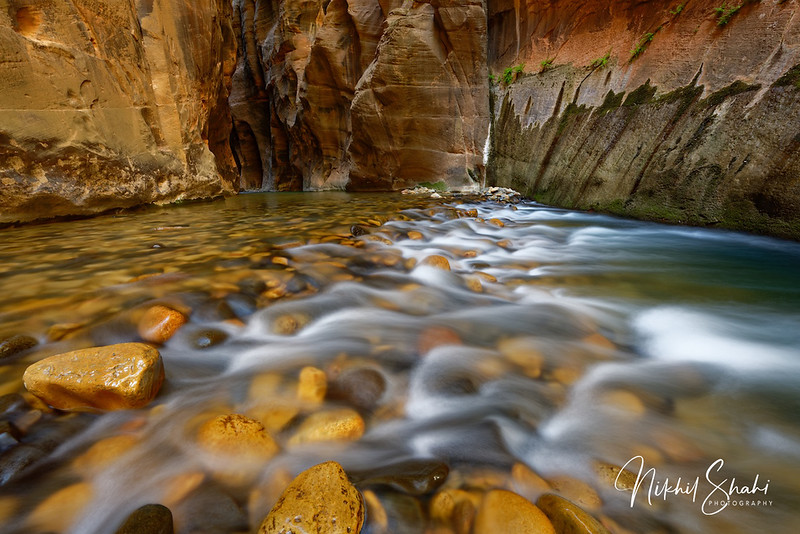 The Narrows of Zion Canyon, Zion National Park, Utah