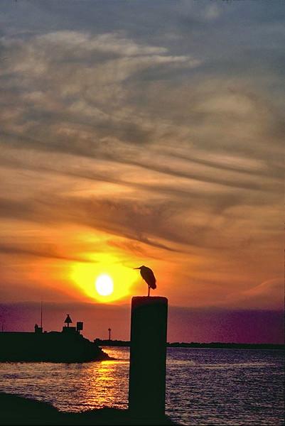 Sunset Oceanside Harbor, Ca