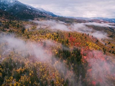 Logan Utah Fall Canyon Road
